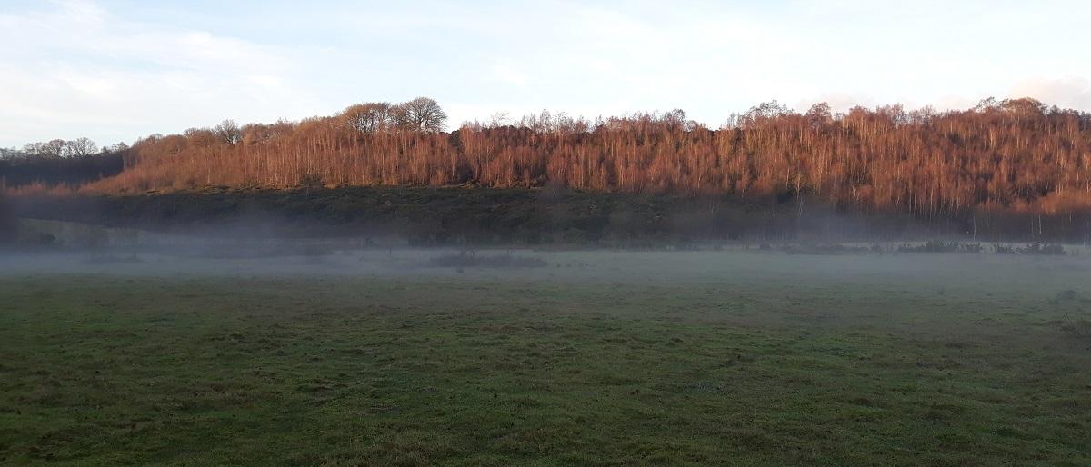 Greenvale Spring Mist