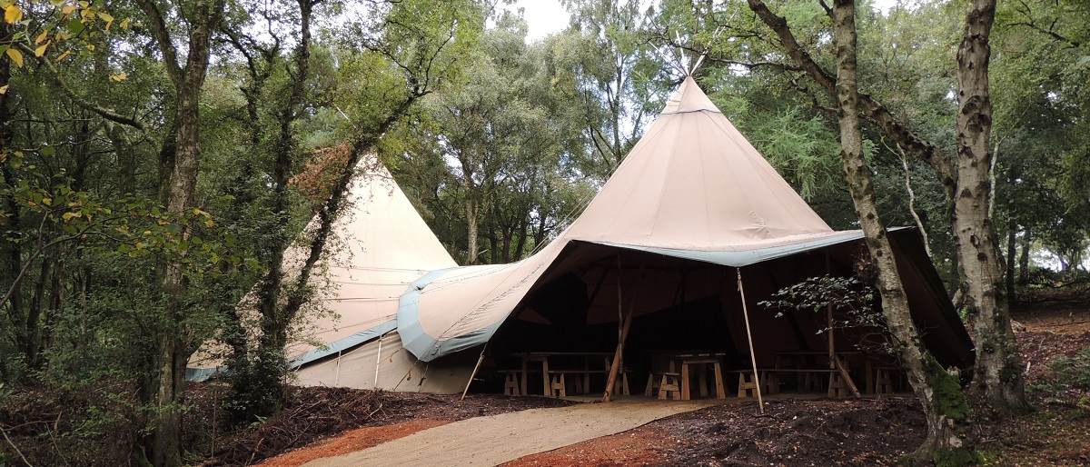 Tipi in the Wyldwood