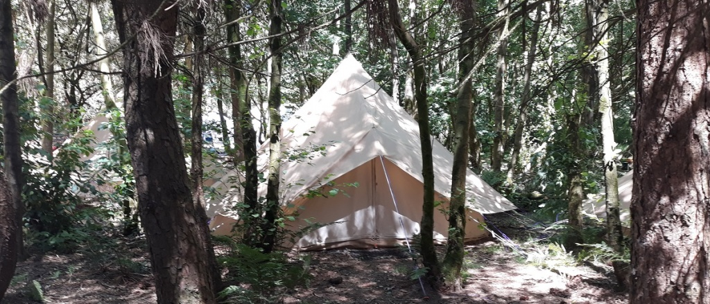 Wyldwood Forest Camping
